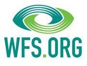 WFS Conscious Evolution: The Future of Futurism